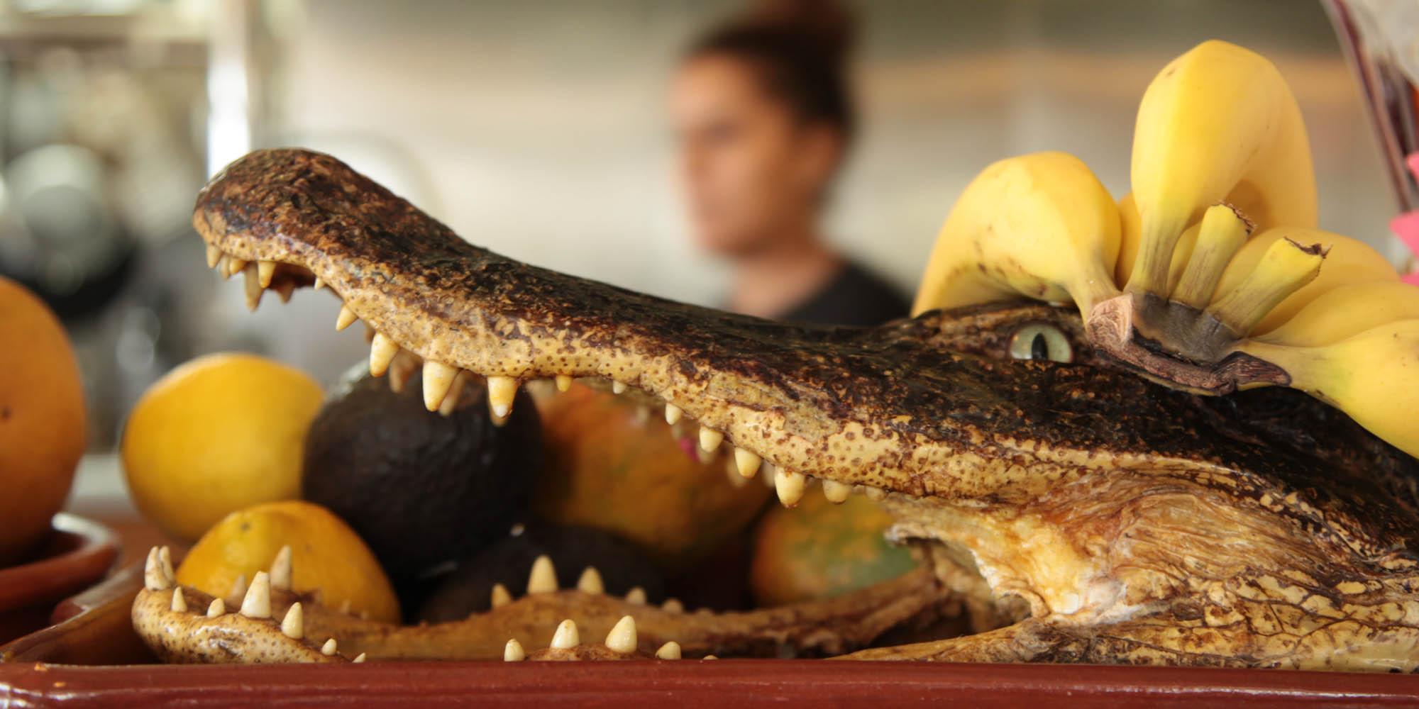 Как сделать крокодил рецепт
