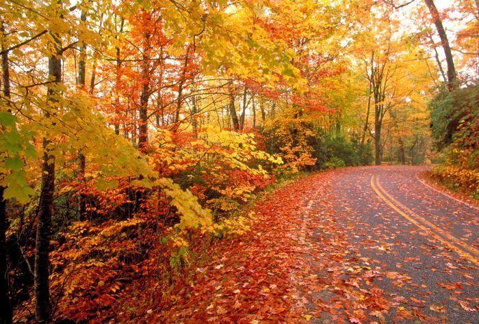 Температура воздуха в Армении 7-9 октября повысится на 5-7 градусов