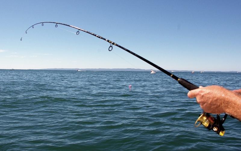 Министр экологии Армении попросил сограждан с пониманием отнестись к запрету на ловлю рыбы на Севане