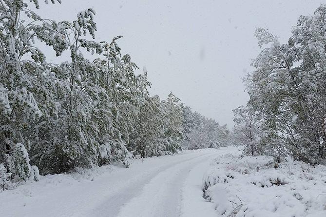 Եղանակը Հայաստանում. ջերմաստիճանը կբարձրանա 8-10 աստիճանով
